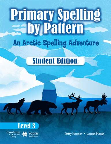 Image result for primary spelling by pattern